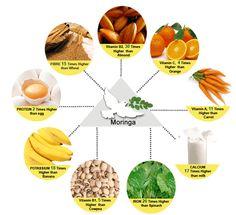 Moringa Oleifera Nutrition Facts