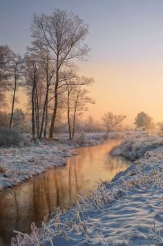 winter morning by Katarzyna Gritzmann Winter Landscape, Landscape Photos, Landscape Art, Landscape Paintings, Landscape Photography, Winter Pictures, Nature Pictures, Winter Photography, Nature Photography