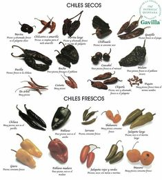 Tipos de chiles Authentic Mexican Recipes, Mexican Salsa Recipes, Mexican Chili, Real Mexican Food, Mexican Cooking, Mexican Dishes, Wine Recipes, Cooking Recipes, Types Of Peppers