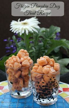 DIY Pet Recipes For Treats and Food - Frozen Pumpkin Dog Treat Recipe - Dogs, Cats and Puppies Will Love These Homemade Products and Healthy Recipe Ideas - Peanut Butter, Gluten Free, Grain Free - How To Make Home made Dog and Cat Food Puppy Treats, Diy Dog Treats, Homemade Dog Treats, Dog Treat Recipes, Healthy Dog Treats, Dog Food Recipes, Homemade Cookies, Dog Cookies, Cookies Et Biscuits