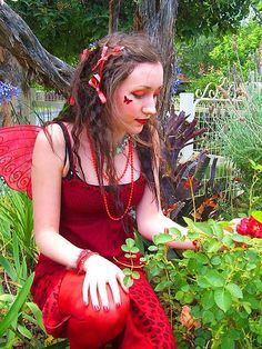 Red faery