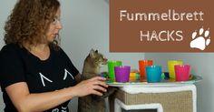 4 Fummelbrett-Hacks, 4 Challenges und 4 Futtertests. Wir stellen euch die Premiumkatzennahrung Kitty´s CUISINE von Fressnapf vor. Getestet werden Nassfutter, Trockenfutter und Snacks in unseren selbst gebastelten Fummelbrettern Kitty, Dogs, Fun, Animals, Snacks, Youtube, Life Hacks, Gatos, Scratching Post