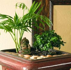 Create a Miniature Meditation Garden to bring peace to your space. via The Mini Garden Guru