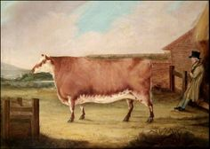museum of english naive art - Google Search