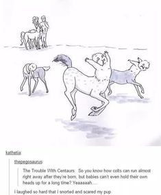 The trouble with centaurs