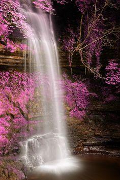 Travel around the world Amazing nature blue plants Glencar Falls, Ireland Beautiful World, Beautiful Places, Beautiful Pictures, Amazing Places, Beautiful Waterfalls, Beautiful Landscapes, Dame Nature, Nature Pictures, Amazing Nature
