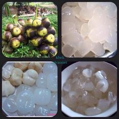 Khmer Dessert - Palm Fruit
