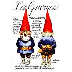 Les gnomes (1998) Wil Huygen et Rien Poortvliet, Albin Michel (Read it in the original dutch!)