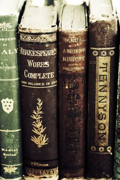 gorgeous old books