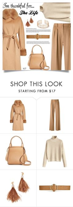 """I'm Thankful For..."" by nuria-pellisa-salvado ❤ liked on Polyvore featuring MaxMara, Lizzie Fortunato, Miss Selfridge, polyvorecommunity, thanksgiving, polyvorecontest and polyvorefashion"