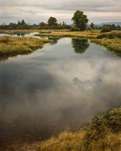 North Arm Backwaters, by Renato Muccillo