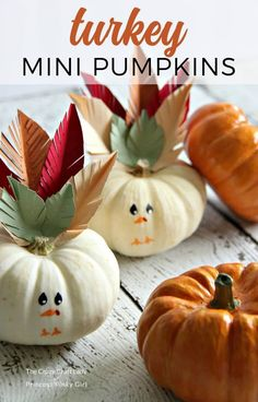 Make these Turkey mini pumpkins with the kids for a fun and easy Thanksgiving craft. Decorate mini pumpkins to look like turkeys – the perfect place holders for your Thanksgiving table! #thanksgivingcraft
