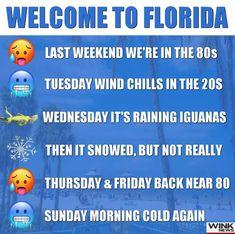 Florida Weather, Dust Storm, Florida Girl, Thursday Friday, Tornados, Sunshine State, Sunday Morning, Girl Stuff, Funny