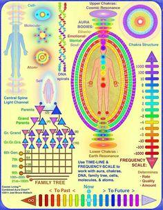How to read Auras - Exemplos de velocidades de Campos Energéticos: Espiritual…