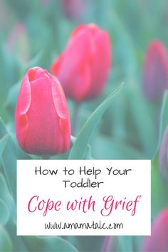 How to Help Your Toddler Cope with Grief Parenting tips, strategies, and resources to use to help your toddler cope with grief and loss. http://www.amamatale.com