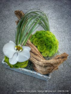 Driftwood, orchid, bear grass and 'green mums' by Kyla Beutler | via Facebook 'Kyla Beutler Floral Artistry' 28april2014