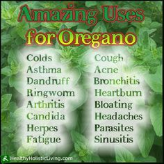 Oregano is widely considered as nature's antibiotic among other wonderful benefits.  Oregano should be a staple in your kitchen and medicine cabinet.
