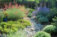 Landscaping and Gardening   The Owner-Builder Network