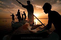 Pakistan, India, by Randy Olson