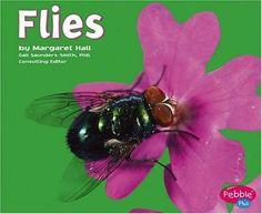 Flies (Bugs, Bugs, Bugs!) by Hall, http://www.amazon.com/dp/0736869034/ref=cm_sw_r_pi_dp_uVEsqb1K4KGG5