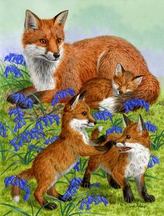 Fox Family Wall or Door Hanging Prints Animals And Pets, Cute Animals, Wild Animals, Baby Animals, Glass Cutting Board, Cutting Boards, Pet Fox, Outdoor Flags, Fox Art