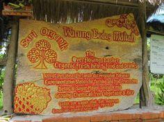 Sari Organik - Ubud restaurant in the rice paddies Bali Lombok, Ubud, Bali Baby, Organic Restaurant, Voyage Bali, Bali Travel, Places To Eat, Trip Advisor, Sari