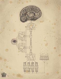 Daniel Martin Diaz / Consciousness System / Anatomical / Sacred Geometry <3
