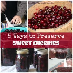 5 Ways to Preserve Sweet Cherries - Homespun Seasonal Living Love the first method idea, not one you see a lot of. Cherry conserve recipe at end Canned Cherries, Sweet Cherries, Recipes With Fresh Cherries, Freezing Cherries, Brandied Cherries Recipe, How To Pit Cherries, Bourbon Cherries, Canning Tips, Canning Recipes