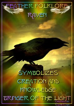 Feather Folklore... Raven - Symbolizes Creation and Knowledge, Bringer of Light...