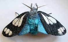 Yumi Okita's Textile Moth and Butterfly Sculptures