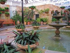 Botanical Gardens Hobart: a Royal Place!  Went here with ma bestie!