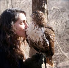 """I like your hawk."" She leaned forward and gave it a kiss. The hawk crowed back affectionately. He just stood there in shock, thoroughly surprised that the bird wasn't pecking her eyes out."