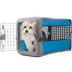 Sportpet Small Pop Crate Pet Crate, 22.5'W x 14.25'D x 14.63'H, Assorted >>> Tried it! Love it! Click the image. (This is an amazon affiliate link. I may earn commission from it)