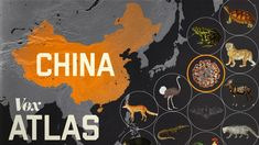 Vox spiega come e perché il COVID-19, la SARS e altre epidemie virali hanno avuto origine in Cina. La legge cinese consente l'allevamento e la vend...