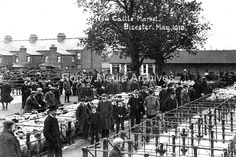 https://www.ebay.co.uk/itm/tyh-10-New-Cattle-Market-Bicester-Oxfordshire-May-1910-Photo/332601630768?hash=item4d709a2030:g:vIoAAOSwUWBau~mS