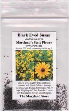 Black Eyed Susan Seeds Packet