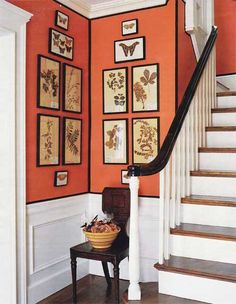 This Orange and black is amazing. Wainscoting, orange walls paint color, chair and botanical Orange Rooms, Orange Walls, White Rooms, Entrance Foyer, Entryway, Entry Hall, Front Hallway, Rental Decorating, Wall Paint Colors