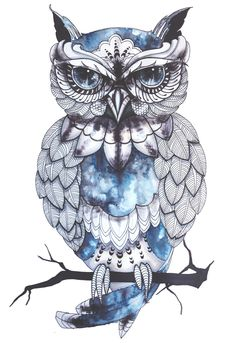 Love these blues!!! Owl tattoo