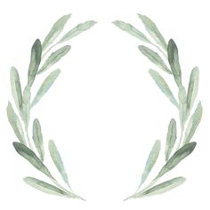 Shop Watercolor Green Olive Branch Wreath Monogram Paper Napkins created by cardsbyflora. Watercolor Leaves, Floral Watercolor, Watercolor Paintings, Wreath Watercolor, Flower Backgrounds, Wallpaper Backgrounds, Molduras Vintage, Christmas Decorations For The Home, Monogram Wreath