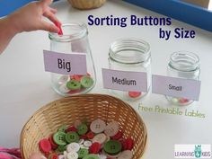 Sorting Coloured Buttons Clothing study- will go along with Golidlocks and Three Bears book as well as investigating features of clothing- large, medium, small. I love the glass jars, it will make a great sound as they sort! Creative Curriculum Preschool, Preschool Lessons, In Kindergarten, Preschool Activities, Eyfs Curriculum, Measurement Activities, Sorting Activities, Toddler Activities, Learning Activities