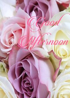 Good afternoon sister 🌞🌞💝💖