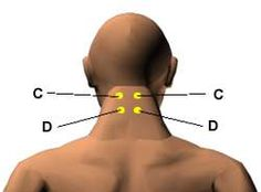 Acupressure Points for Relieving Improving Memory & Concentration.