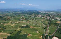 Capriva del Friuli: conosciuta per il suo dolce paesaggio e per le sue eccellenti cantine.