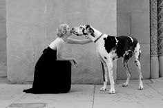 kiss! #caninecouture #dogs #fashion