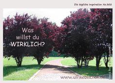 Die tägliche Inspiration No.302  www.inspirationenblog.wordpress.com  www.ulrikebischof.de