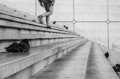 MAUD WEBER  Solitude #3 24 x 36 Photographie 280€