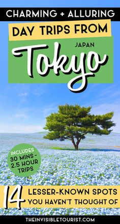 Ideas for best day trips from Tokyo in summer, autumn, winter & spring. Find hidden gems & less-travelled side trips from Tokyo with JR Pass! Japan Travel Guide, Tokyo Travel, Asia Travel, Travel Guides, Travel Advice, Travel Articles, Travel Abroad, Day Trips From Tokyo, Excursion