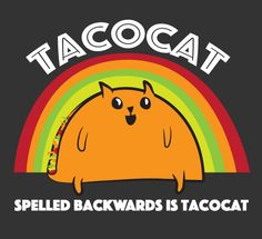 Thought Guy might find this amusing haha The Oatmeal Comics, Taco Pictures, Taco Pics, Cat Empire, Taco Love, Kitten Drawing, Exploding Kittens, Taco Cat, Dope Cartoons