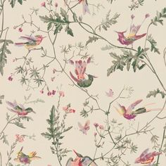 Buy Cole & Son Archive Anthology Hummingbirds Wallpaper online with Houseology's Price Promise. Full Cole & Son collection with UK & International shipping. Colorful Wallpaper, Fabric Wallpaper, Wallpaper Roll, Wallpaper Ideas, Beautiful Wallpaper, Print Wallpaper, Bird Wallpaper Bedroom, De Gournay Wallpaper, French Wallpaper