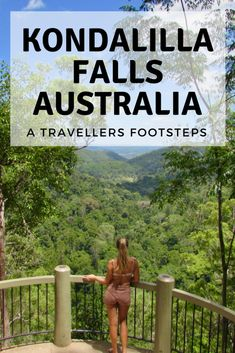 Kondalilla Falls is one of the most breathtaking waterfalls in the Sunshine Coast. This is everything you need to know about visiting Kondalilla Falls. Travel Advice, Travel Guides, Travel Tips, Travel Packing, Packing Tips, Budget Travel, Work And Travel Australia, Coast Australia, Queensland Australia